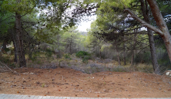 Plot of Land - Resales - Moraira - Benimeit